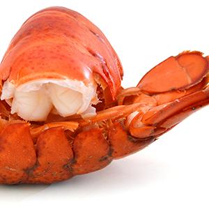 FishSeafood7